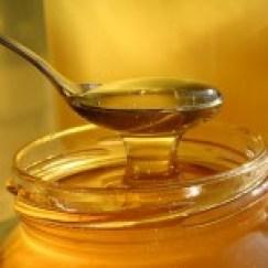 honey-atroszko-sxc1