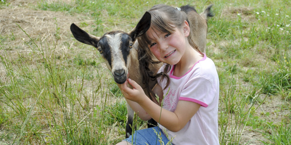 kids with goats_blog_2
