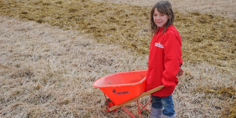 jade and greyden spreading manure_3