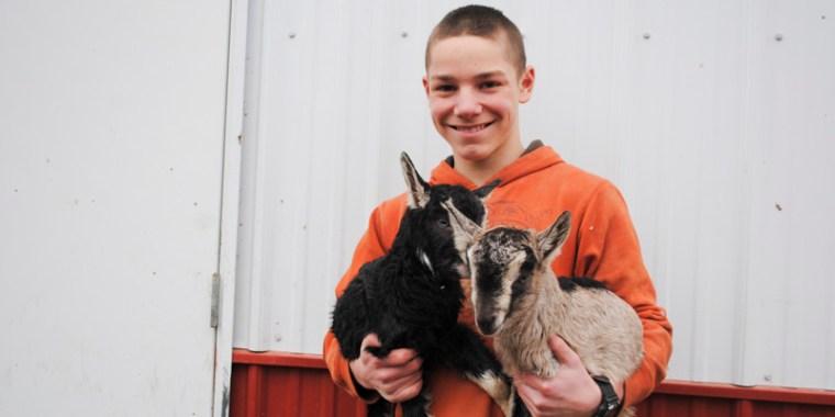 tapioca baby goats_blog