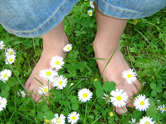 daisies and children's feet
