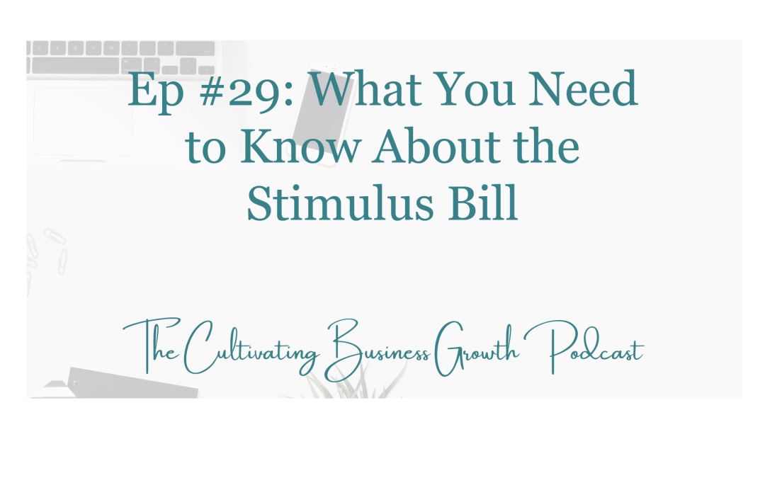 #29: What You Need to Know About the Stimulus Bill – Part II