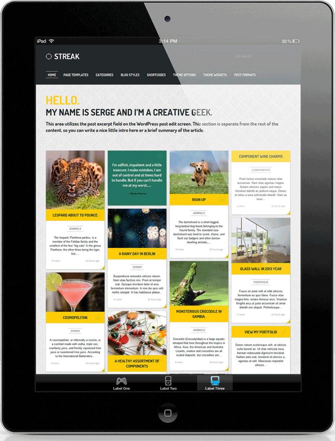 wordpress website builders in delhi ncr making portal hosted websites on latest themes