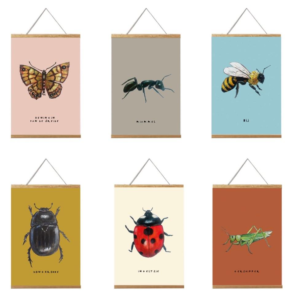 6 a4 posters met insecten en hun Friese namen