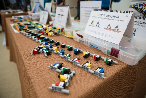 Lego DNA interactive exhibit Photo Credit: MIT News