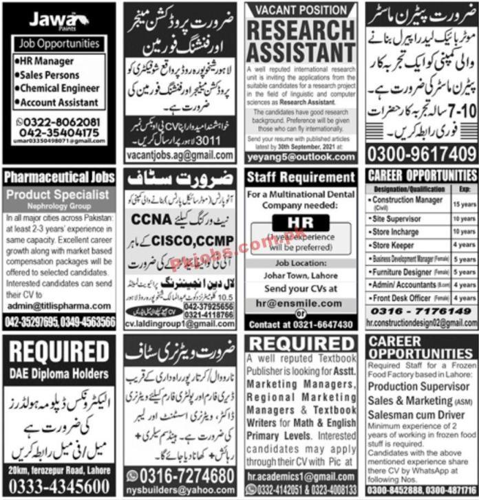 Jobs In Jang Newspaper Jobs 13 September