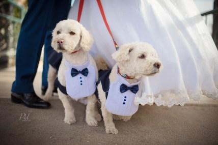 pkl-fotografia-wedding-photography-fotografia-bodas-bolivia-jyf-040