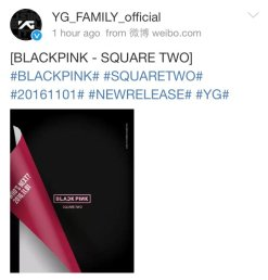 161020-ygfamily-weibo-whos-next-20161101-blackpink-cap