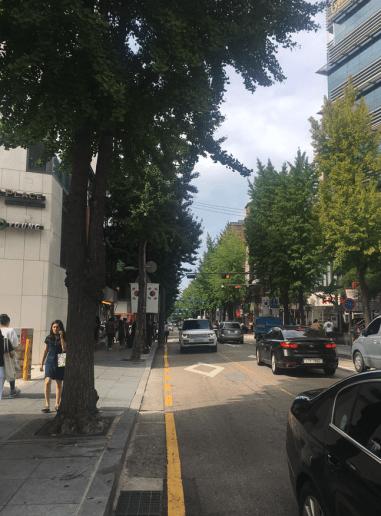 カロスギル(韓国)