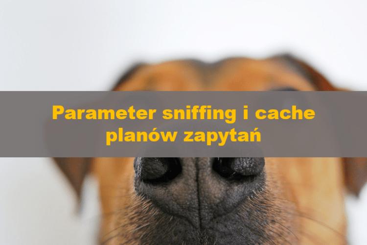 ParameterSniffingCachedPlans_00