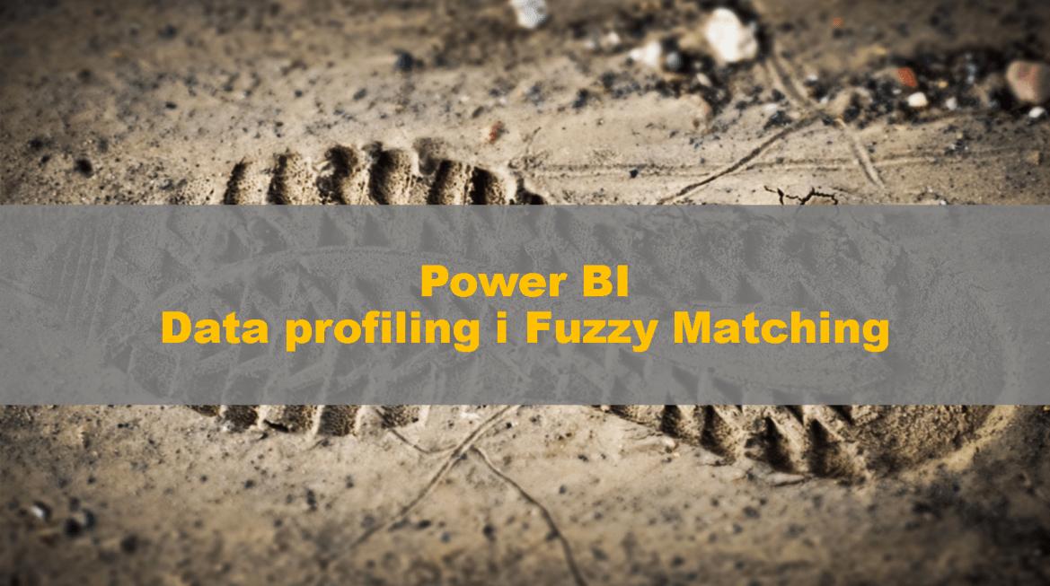 PowerBI_Profiling_FuzzyMatching_00