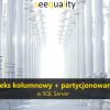 SQLServer_ColumnstorePartitioning