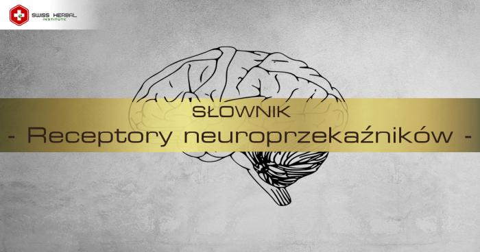 receptory neuroprzekaznikow definicja