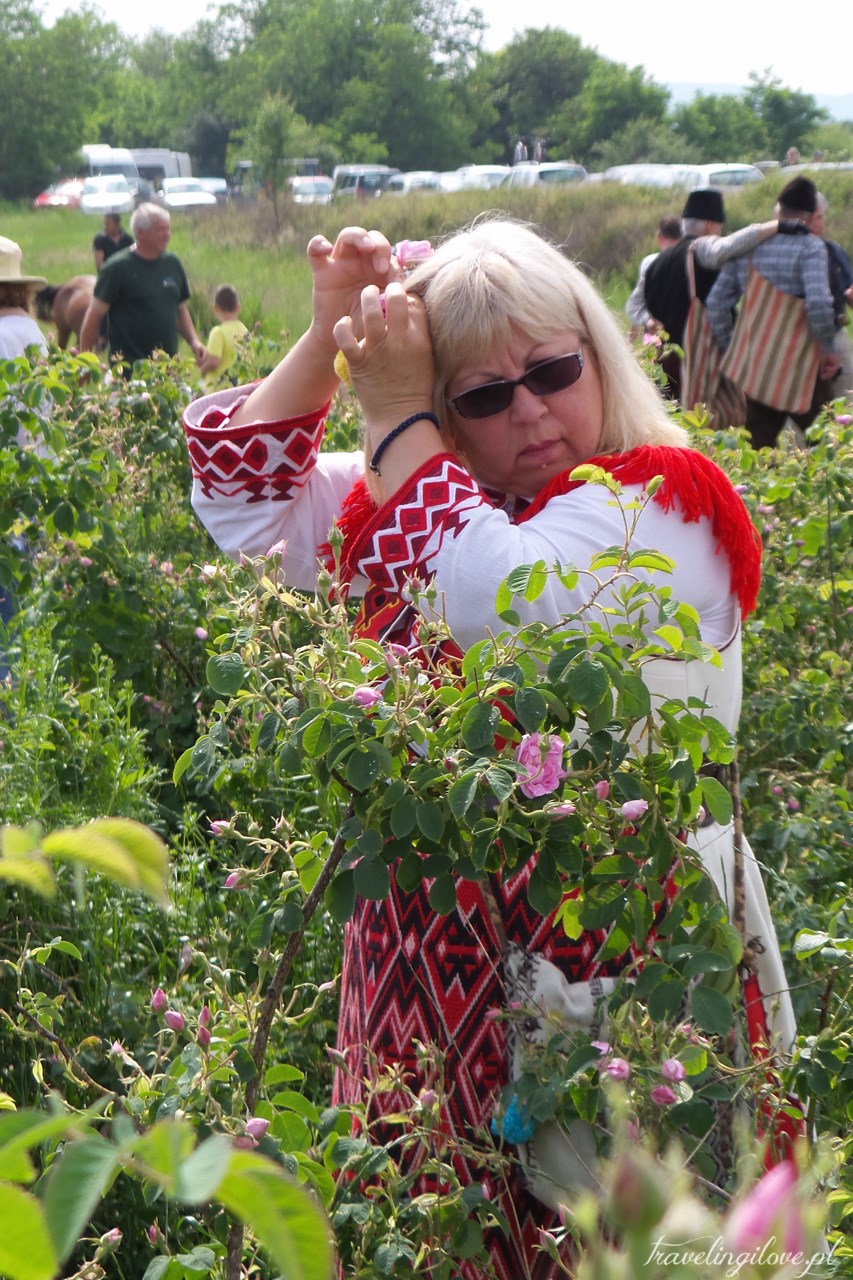 Festiwal Róż w Bułgarii 2017 (7)
