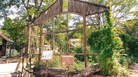 Szpital w Beelitz i ścieżka w koronach drzew 2