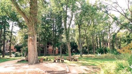 Szpital w Beelitz i ścieżka w koronach drzew 3