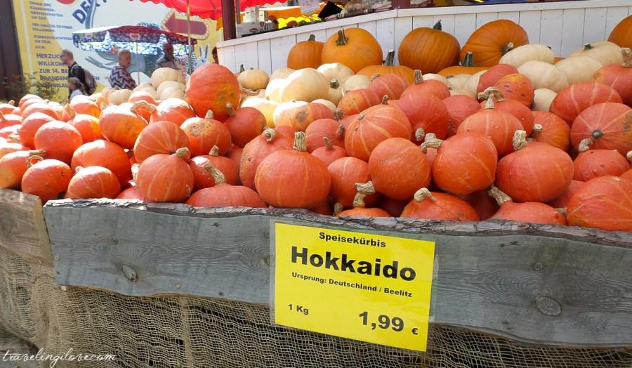 Japońska dynia Hokkaido na Kürbisfestival w Brandenburgii