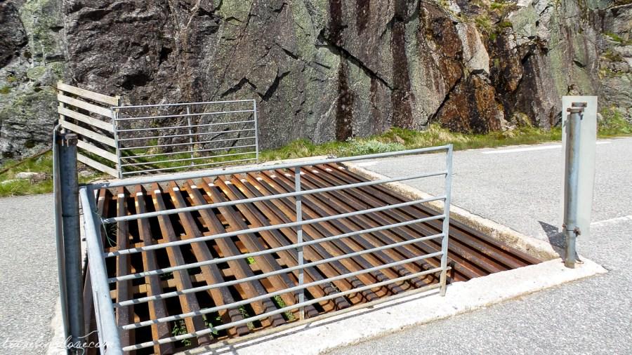 Zapora dla owiec w górach Norwegii