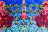 Jivan Mariam Zen oefening little pink roses