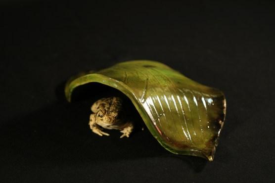#028 Raku hosta leaf toad house, small - $25