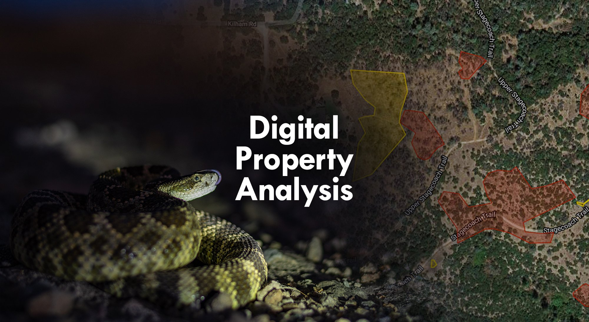 New: Digital Property Analysis by Placer Snake Removal