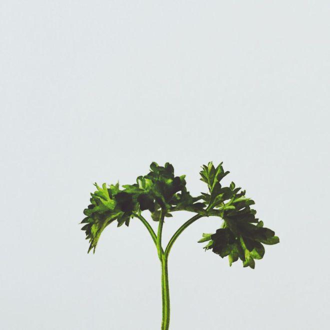 minimalistische-fotografie_anne-pannecke-111