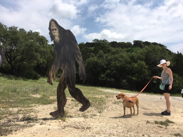 Found Sasquatch while heading to Canyon Lake for the day.