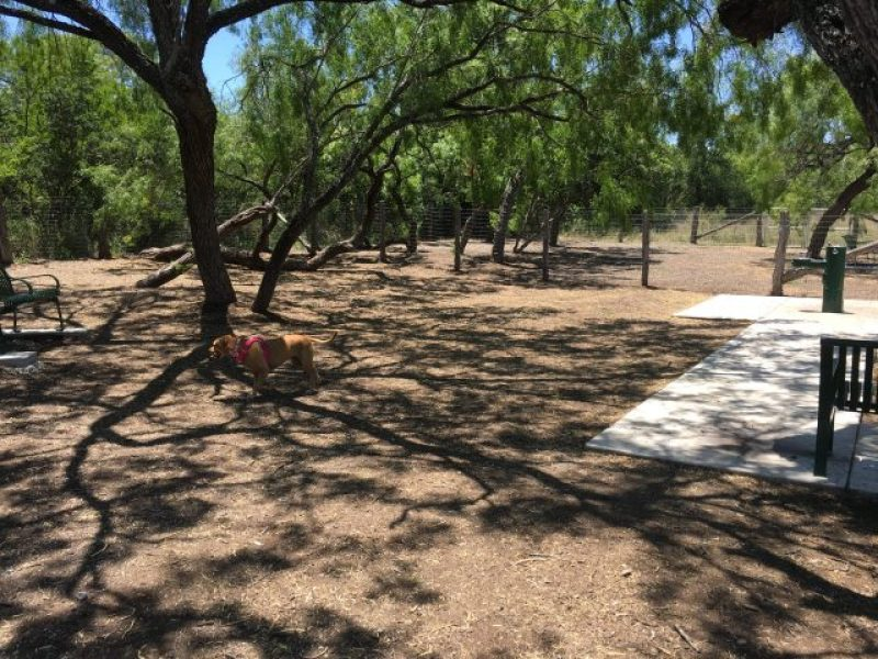 The dog park is well shaded, but it contains no obstacles.