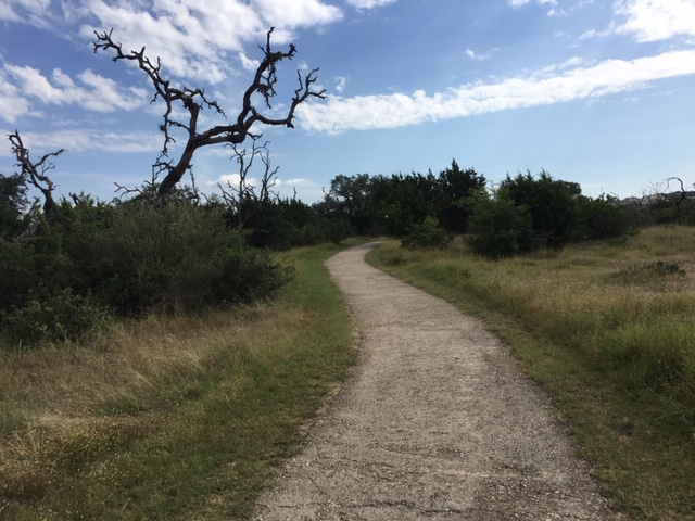 The loop trail with wide open views.