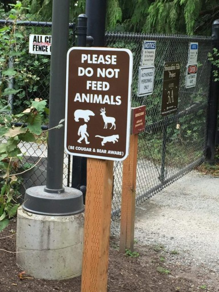 The sign states not to feed the animals and one picture shows a Sasquatch.
