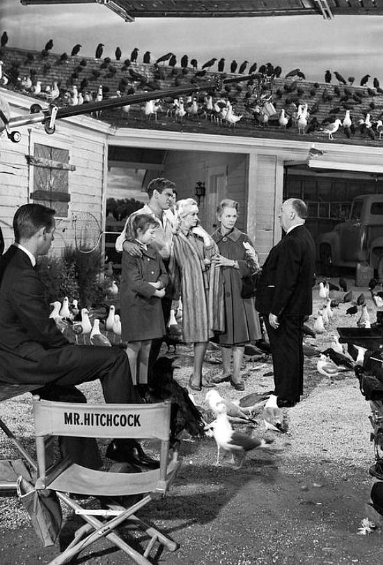 Hitchcock-the-birds-set
