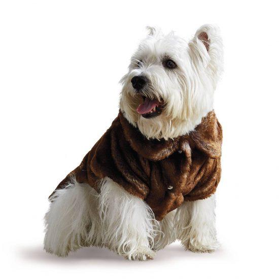 westie-in-fur-jacket-collar