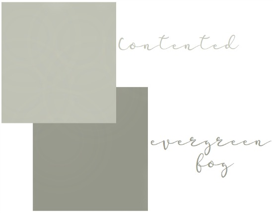 SW-contented-evergreen-fog