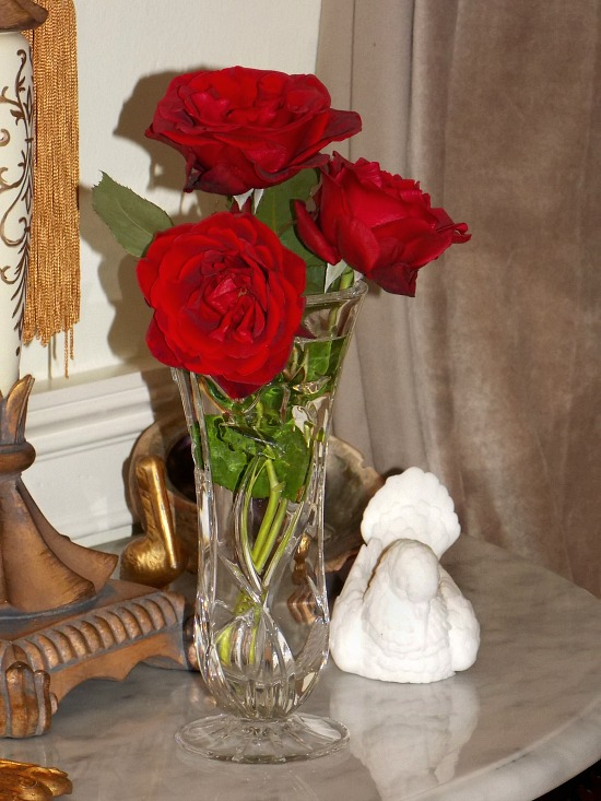 blooming-red-roses