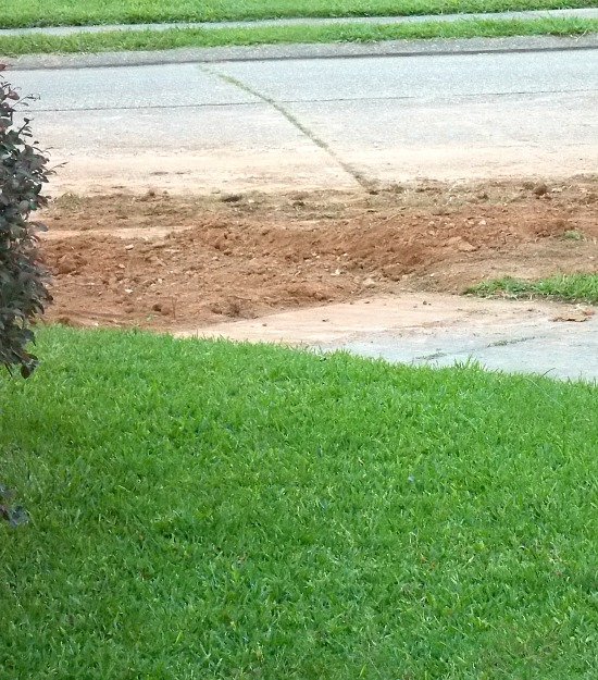 dug-up-sidewalk