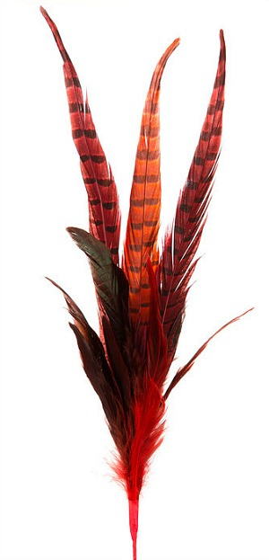 red-feathers