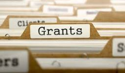 Guidelines on PLAI Grants