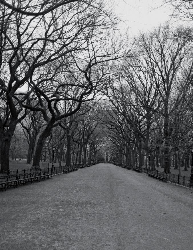 literary_walk_nyc