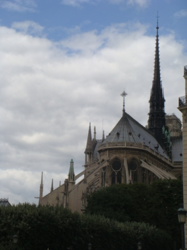 Standing Tall: Notre Dame behind the greenery