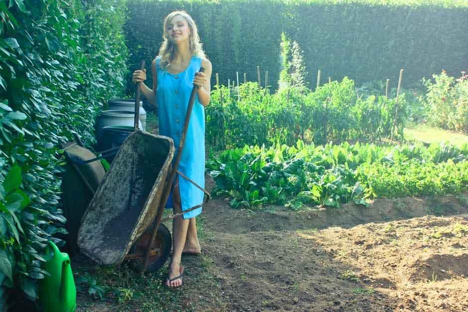 wheel barrow for gardening