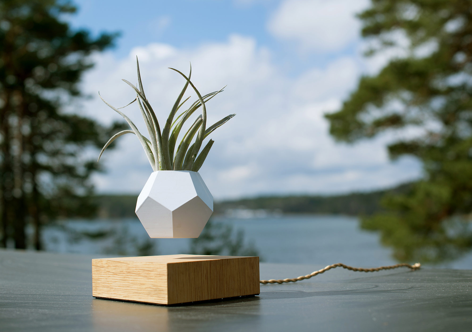 Make your plants float in this zero-gravity planter - PLAIN