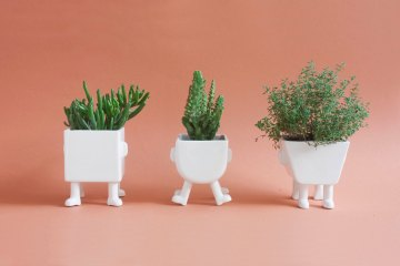 Madriguera Workshop Planters Design