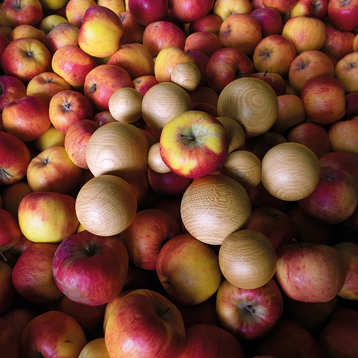 Boule Seibensachen Fruit Bowl Design