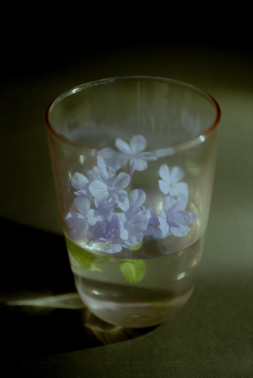 Li Hui Photography