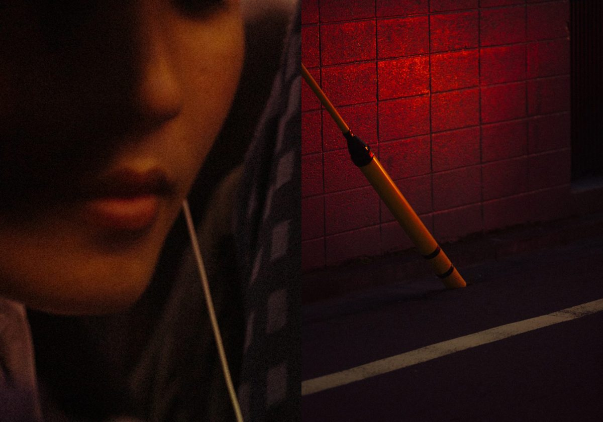Tokyo Still Lifes and Portraits as Diptychs by Jonathan VDK