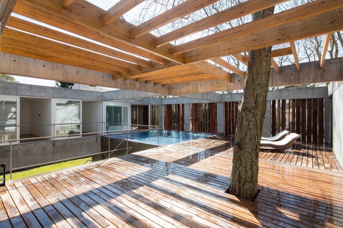 tree house estudio botteri-connell