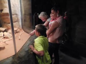 Family at Denver Aquarium