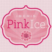 Pink Ice : #10 on Stores Like Free People