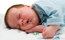 Why Do We Need to Sleep?
