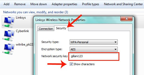 Wifi Network Properties Shows The Password